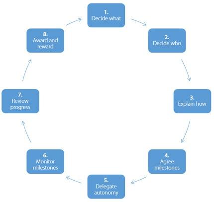 diagram indicating the 8 steps of delegation